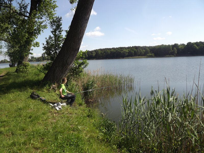 zdjecia-1-06-2015-084
