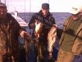 Bałtyk 2009 zdjecie151