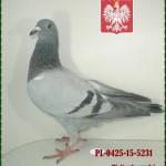 w-norkowski-golab