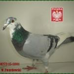 w-twardowski-golab